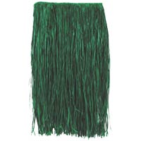 green child hula skirt